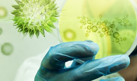 بهترین آزمون آنلاین زیست – آزمون زیست لیموترش